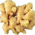 Леха с подправки: Златен корен – другото име на джинджифила