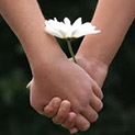 Ръка за ръка