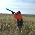 Европа посяга към пушката на българския ловец