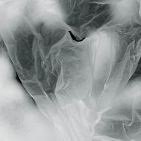 Изложба в София: Бяло и крехко като хартия