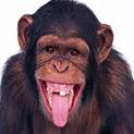 Глас от мрежата: Нещо ми писна! Правят ни на маймуни!