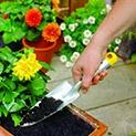 Полезно: Кафето и черупките на яйцата подхранват почвата