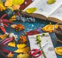 През есента организмът търси слънчевата светлина и топлина
