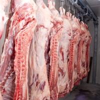 Недопустимо: С какво ни хранят големите търговски вериги