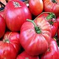 Зеленчуците и плодовете на България - продукти от рая