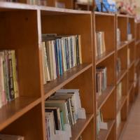 Нови книги влязоха в читалището на Караманово