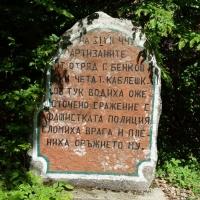 13. ПАРТИЗАНИТЕ - кой беше в Балкана?