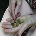 Жълти стотинки: Социалната пенсия се вдига с 3 лева