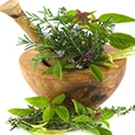 Природна аптека: Растения вместо таблетки