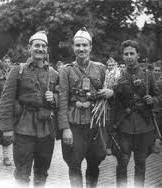 Политкомисарят на партизанската бригада