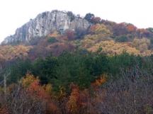 Местността Камъка край Горна Оряховица – тук някъде е катастрофирал цепелинът