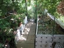 Част от градината във Велика