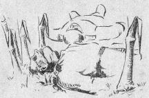 Труповете останали да лежат в царевичната нива. Рисунка от тогавашния български печат.