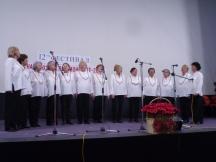 Изпълнение на певческата група