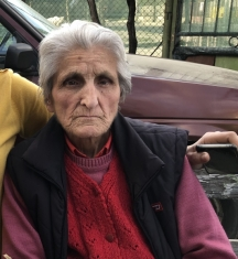 Баба Дежка